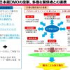 どうして現時点で日本版DMOはうまくいかないの?